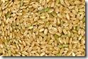gluten free diet rice
